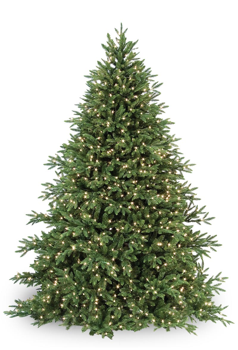 Carolina Fir Prelit Tree